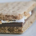 Smores with gluten free graham crackers